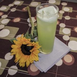 girasol-cooler-daddy-os-martinis